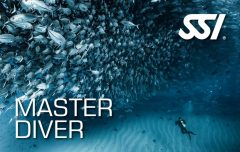 master-diver-ssi-specialty-deal