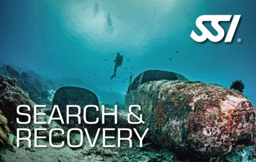 search-and-recovery