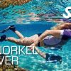 snorkel_diver_small